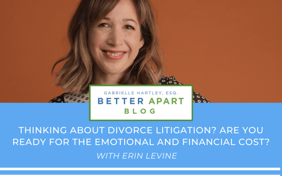 Divorce Litigation – The Emotional and Financial Cost
