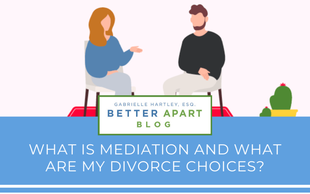 What is Mediation and What Are My Divorce Choices?