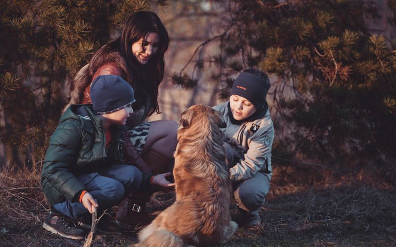 Finding the Courage to Design Your Own Unique Co-Parenting Arrangement